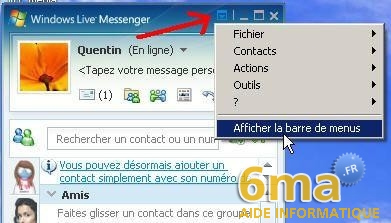 tutorial Windows Live Messenger pour debutants image16